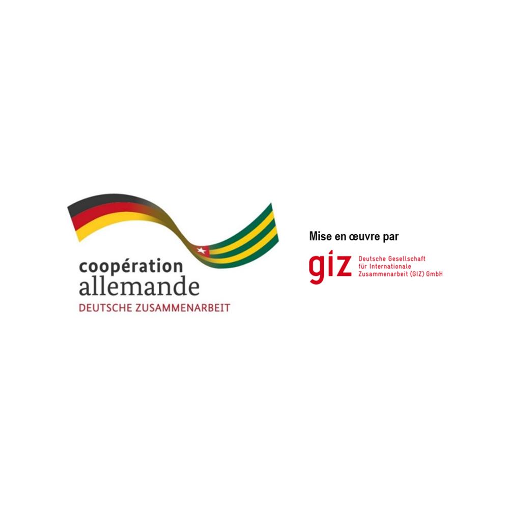 logo-giz-partenaire-div-prosanté-division-promotion-de-la-santé-togo