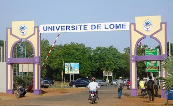 Lutte contre covid-19: DES CHERCHEURS UNIVERSITAIRES D'AFRIQUE EN REFLEXION